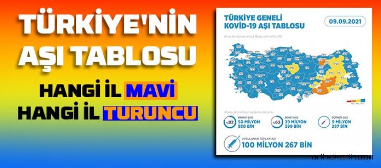 Türkiye'nin aşı tablosu, Hangi il mavi, hangi il turuncu